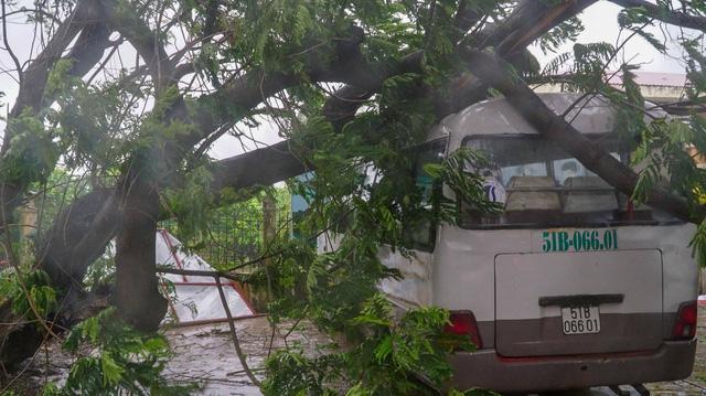 TP.HCM ngập diện rộng, cây ngã đè chết người đi đường - Ảnh 8