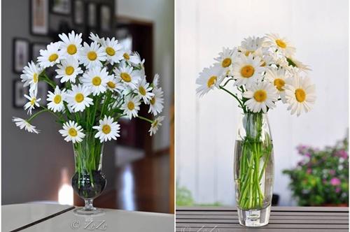 Cắm hoa cúc ngày Tết đẹp với bình cao