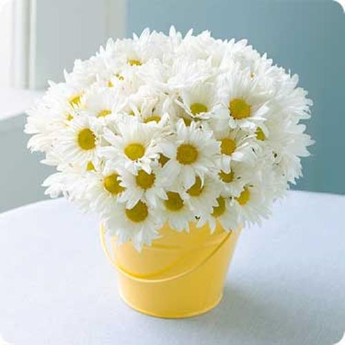 Học ngay cách cắm hoa cúc ngày Tết trong xô đồ hàng xinh xắn
