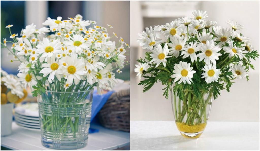 Mách chị em cách cắm hoa cúc ngày Tết mang sung túc và may mắn cả năm