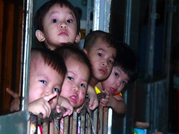 Ánh mắt cầu cứu của 232 đứa trẻ bị bố mẹ bỏ rơi, lớn lên từ vạt áo cà sa của người cha già nơi cửa Phật - Ảnh 1