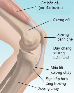 Trẻ đau chân khi tăng trưởng, do đâu? - Ảnh 1