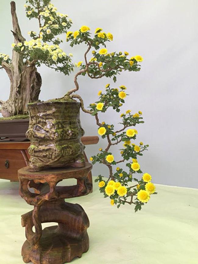 5 loại hoa được săn lùng nhiều nhất để làm đẹp nhà Tết Kỷ Hợi - Ảnh 4