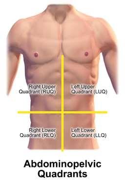 Đau bụng trên bên trái là ở vị trí nào?