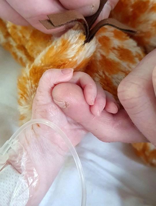 Mới sinh con được 40 phút, bà mẹ chết lặng nghe bác sĩ nói chuẩn bị tinh thần vì con rất yếu - Ảnh 1