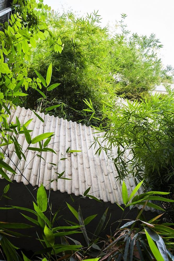 'Nhà tre' như rừng cây trong hẻm Sài Gòn, vừa tắm vừa nghe chim hót - Ảnh 3