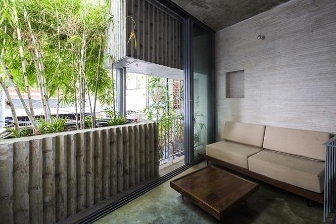 'Nhà tre' như rừng cây trong hẻm Sài Gòn, vừa tắm vừa nghe chim hót - Ảnh 4