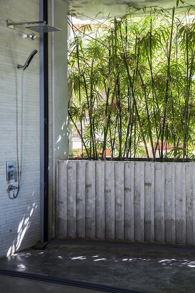 'Nhà tre' như rừng cây trong hẻm Sài Gòn, vừa tắm vừa nghe chim hót - Ảnh 7