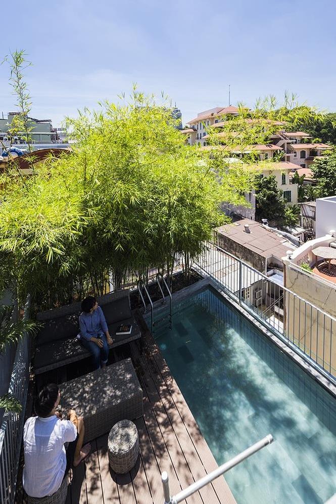 'Nhà tre' như rừng cây trong hẻm Sài Gòn, vừa tắm vừa nghe chim hót - Ảnh 8