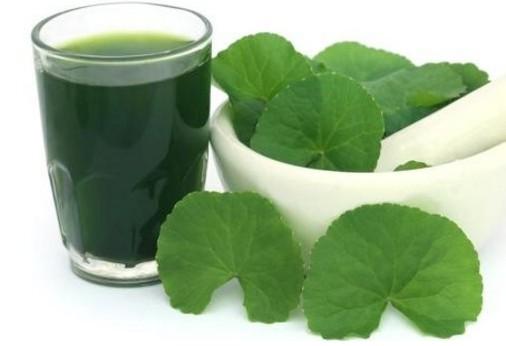Bà đẻ uống cật lực 10 loại nước MÁT LÀNH này trong tháng Ở CỮ đảm bảo sữa THƠM ĐẶC QUÁNH - Ảnh 4