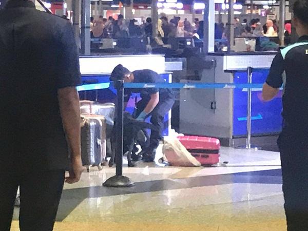 Nói có bom trong hành lý, 2 nữ hành khách Việt bị giữ ở Malaysia - Ảnh 1