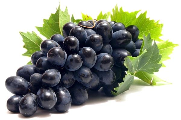 Những loại trái cây gây hại cho thai nhi bà bầu tuyệt đối nên tránh - Ảnh 1