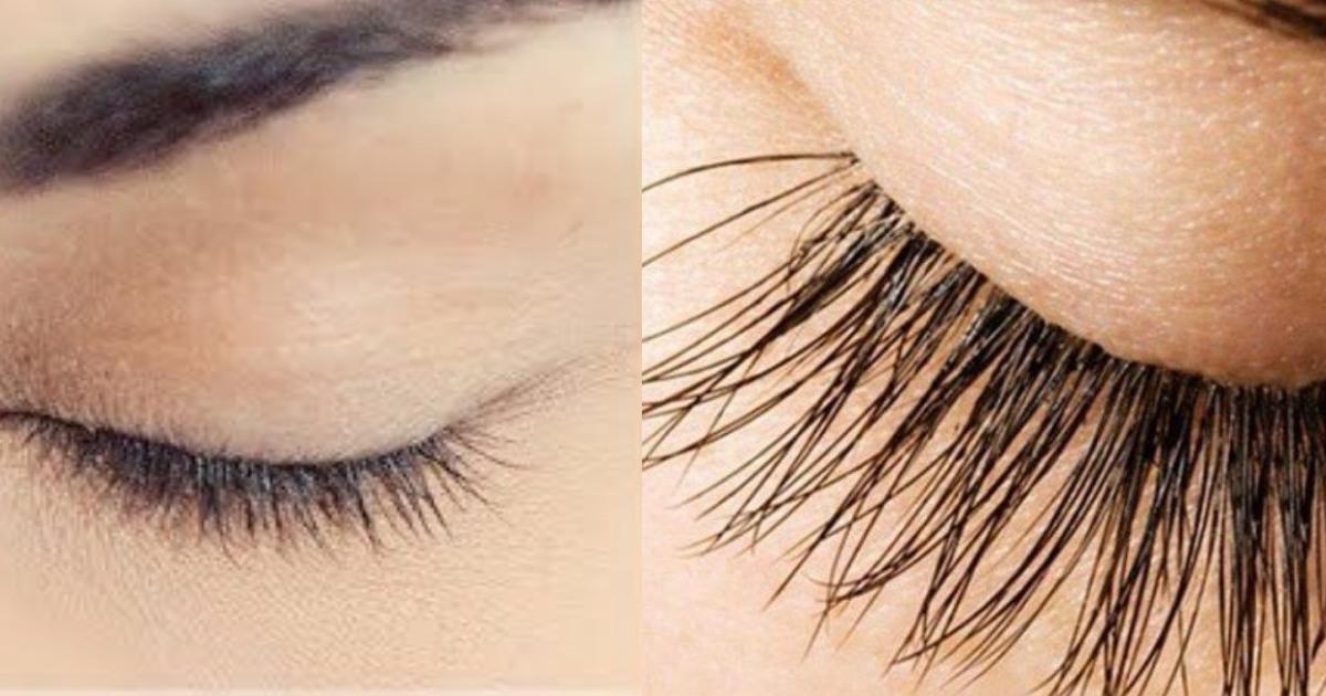 Làm theo cách này lông mi sẽ dài ra và dày tự nhiên không cần chuốt mascara - Ảnh 3
