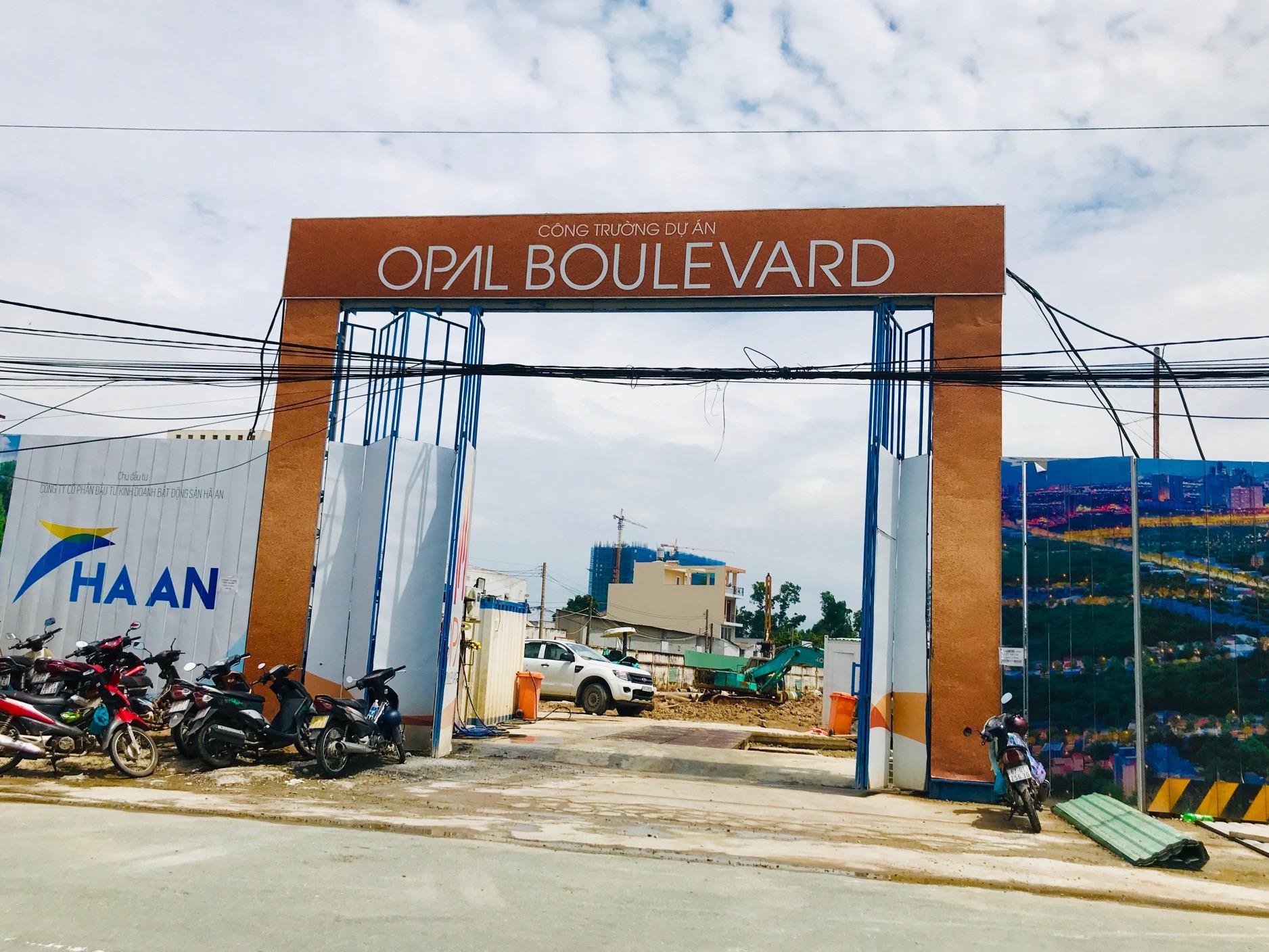 Chủ tịch Bình Dương chỉ đạo làm rõ việc huy động vốn trái phép tại Opal Boulevard - Ảnh 2