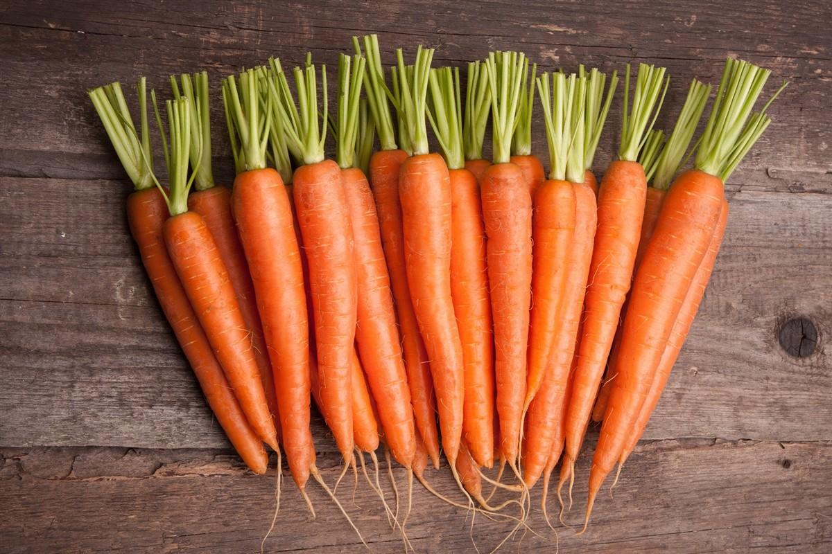 Muốn làn da luôn căng bóng, khỏe mạnh thì nên chăm ăn 7 loại thực phẩm giàu collagen sau đây - Ảnh 5