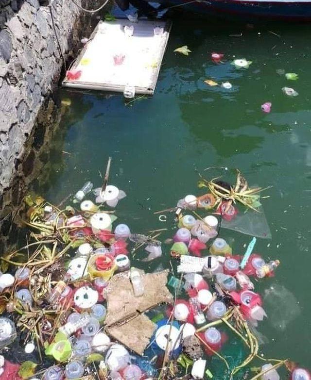 Thả 3 vạn hoa đăng nhựa xuống biển Cát Bà là để 'bảo vệ môi trường' - Ảnh 2