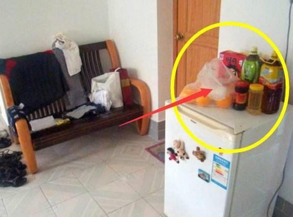Còn để thứ này trên tủ lạnh tiền ra như nước, 3 đời sau cũng không giàu nổi - Ảnh 3