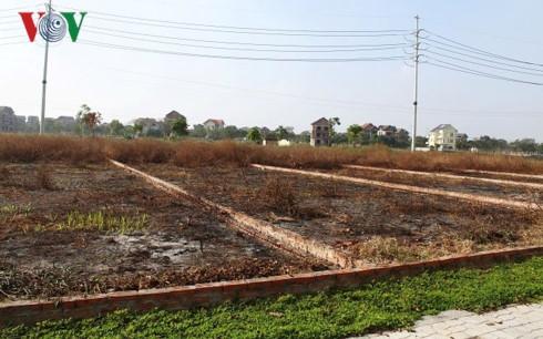 Dự án The Diamond Park Mê Linh: Chưa xây nhà ở xã hội nhưng đã bán biệt thự - Ảnh 3