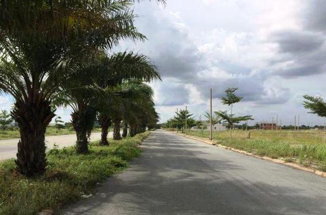 TPHCM chỉ đạo tạm ngưng đấu giá và thanh tra Dự án KCN Phong Phú - Ảnh 1