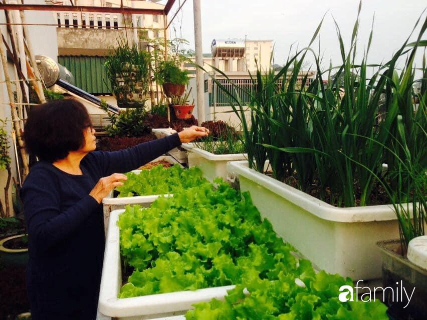 Ngắm căn hộ chung cư ngập tràn tình yêu thương từ bàn tay chăm chút của mẹ chồng tảo tần tại Quảng Ninh - Ảnh 1