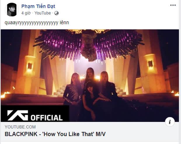 Dàn sao Việt như phát cuồng vì BLACKPINK: Người hoá 'chuyên gia âm nhạc', người tự nhận là thành viên rồi thi nhau share và reaction trên khắp MXH - Ảnh 14