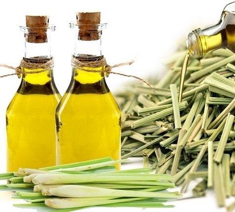 Loại dầu thiên nhiên massage giúp trẻ hóa làn da - Ảnh 1