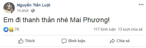 Sao Việt đồng loạt bày tỏ niềm thương tiếc trước sự ra đi của nữ diễn viên Mai Phương - Ảnh 5