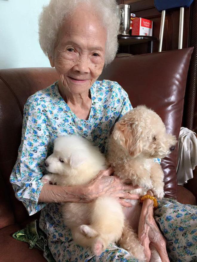 Bức ảnh con chó nép bên bà ngoại lúc hấp hối và câu chuyện cảm động do cháu gái kể - Ảnh 3