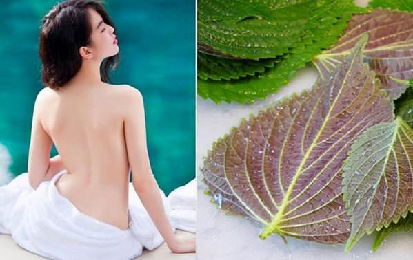 Tắm trắng tại nhà an toàn dễ dàng từ nguyên liệu tự nhiên - Ảnh 4