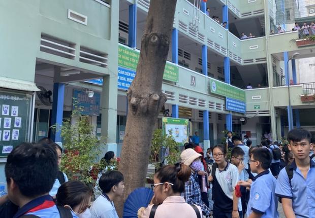Vụ cây phượng đổ đè trúng 18 học sinh: Bé trai bị đa chấn thương nặng phải trải qua ca phẫu thuật 5 tiếng - Ảnh 1