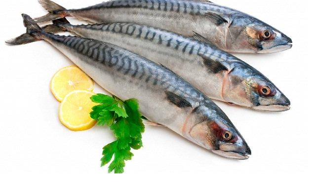 4 loại cá gây hại não trẻ, dù có ngon đến mấy mẹ bầu cũng cần hãm lại để không nguy hại cho con - Ảnh 2