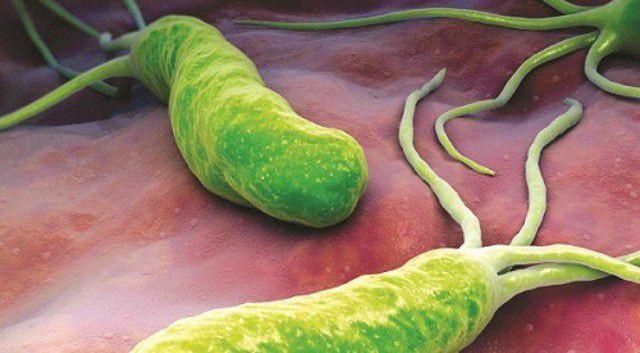 Bé 2 tuổi mang vi khuẩn gây ung thư dạ dày: BS chỉ ra thói quen sai lầm nhà nào cũng mắc - Ảnh 2