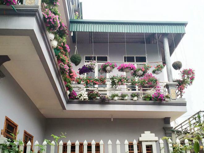Trồng các loại hoa nơi ban công vừa đẹp vừa hóa giải khí xấu cho ngôi nhà