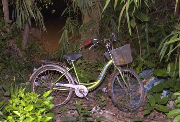 Va chạm trên cầu, bé gái đi xe đạp rơi xuống sông mất tích - Ảnh 1