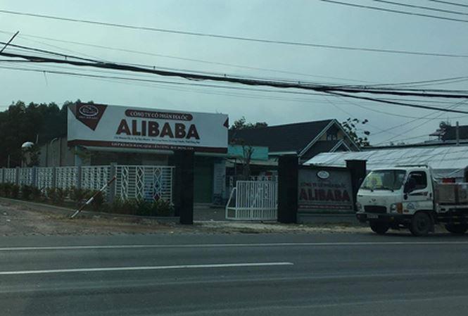 Nhận diện ông 'trùm' địa ốc Alibaba - Ảnh 1