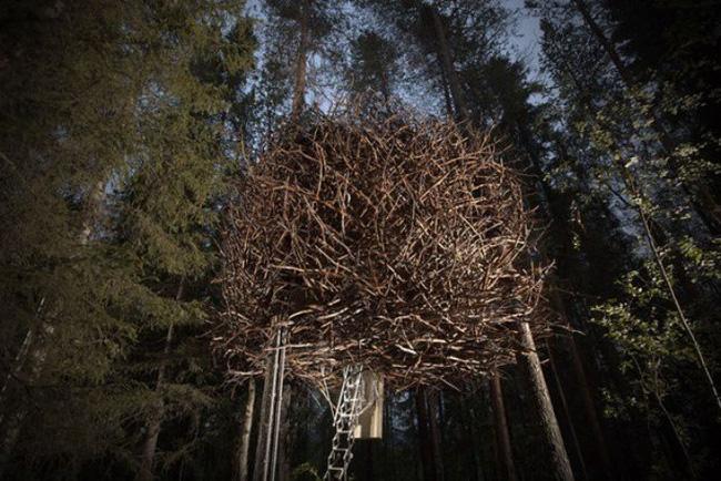 Những ngôi nhà trên cây tuyệt đẹp khiến bạn mộng mơ đến một cuộc sống chan hòa bên thiên nhiên - Ảnh 15