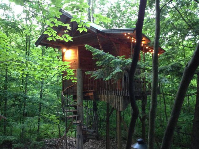 Những ngôi nhà trên cây tuyệt đẹp khiến bạn mộng mơ đến một cuộc sống chan hòa bên thiên nhiên - Ảnh 16