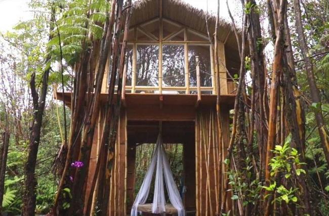 Những ngôi nhà trên cây tuyệt đẹp khiến bạn mộng mơ đến một cuộc sống chan hòa bên thiên nhiên - Ảnh 18