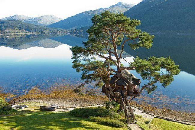Những ngôi nhà trên cây tuyệt đẹp khiến bạn mộng mơ đến một cuộc sống chan hòa bên thiên nhiên - Ảnh 21