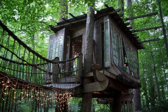Những ngôi nhà trên cây tuyệt đẹp khiến bạn mộng mơ đến một cuộc sống chan hòa bên thiên nhiên - Ảnh 3