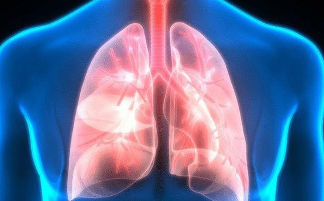 Nguy hiểm khi bụi mịn đi thẳng vào phổi, phải làm gì để làm sạch phổi ngay hôm nay? - Ảnh 3