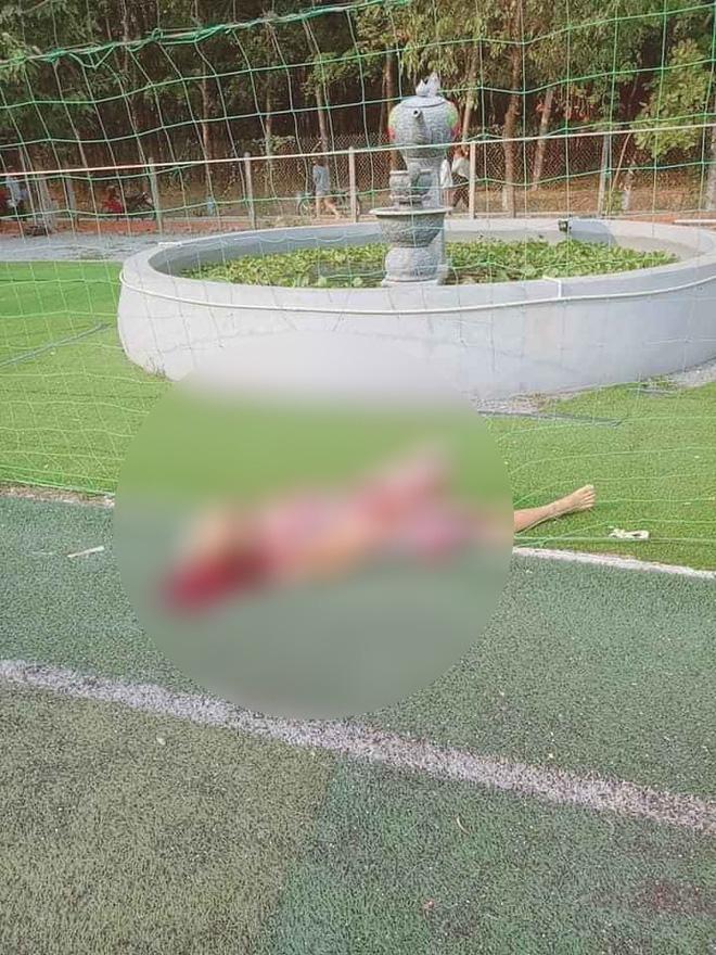 Nam sinh viên nghiện game đuổi chém bà ngoại đến chết ở Tây Ninh - Ảnh 1