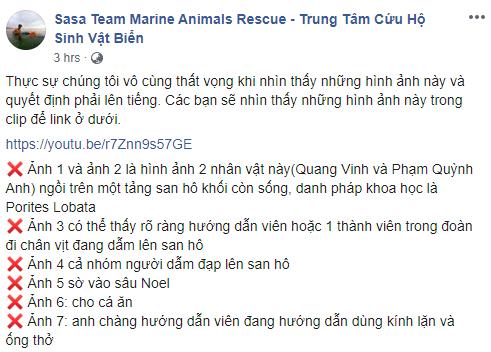 Quang Vinh và Phạm Quỳnh Anh bất ngờ bị lên án vì hành động phá hoại tài nguyên thiên nhiên biển - Ảnh 1