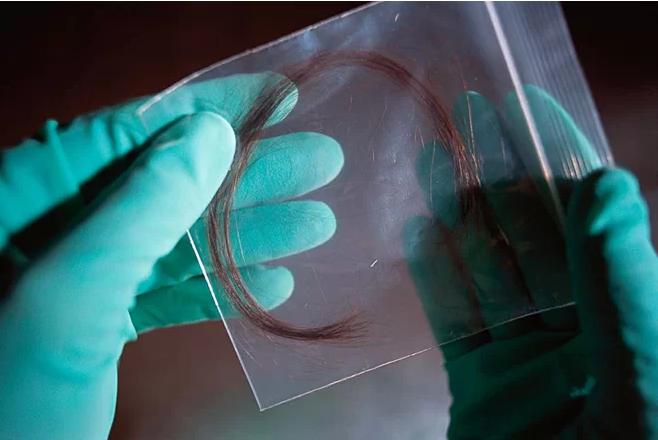 Xét nghiệm ADN nhận con mới phát hiện mình bị vô sinh - Ảnh 1