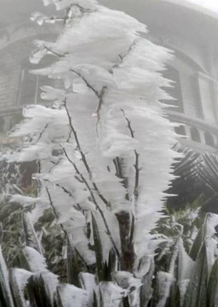 Du khách nườm nượp kéo về đỉnh Mẫu Sơn ngắm băng giá - Ảnh 13