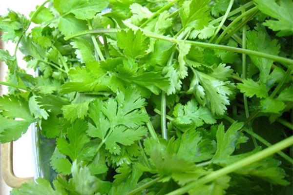 Cách làm salad trộn vừa ngon vừa thanh mát, giúp bạn giải nhiệt mùa hè - Ảnh 4