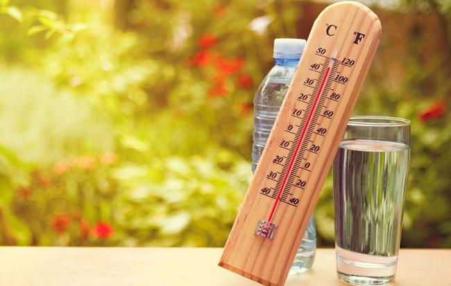 Uống nước thế nào cho đúng: Chuyên gia phân tích loại nước tốt nhất bạn nên uống hàng ngày - Ảnh 1