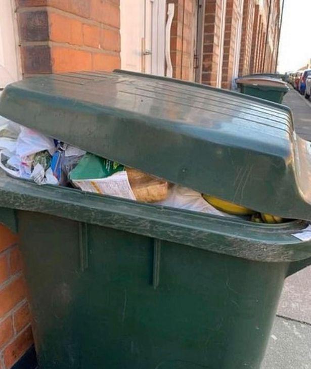 Sau 'cơn bão' tích trữ thực phẩm vì Covid-19, thùng rác trên phố xuất hiện những thứ khiến nhiều người phải giật mình tự nhìn lại bản thân - Ảnh 3