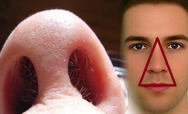 Thói quen cắt, nhổ lông mũi có hại hay vô hại: BS Mỹ giải thích cực chuẩn, ai cũng phục - Ảnh 2