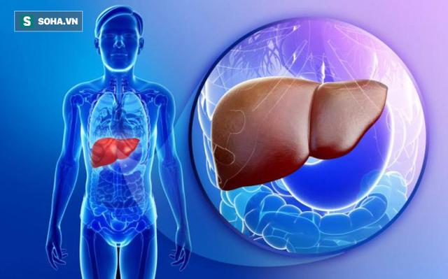 6 dấu hiệu cảnh báo khi bệnh gan tiến triển thành ung thư: Phát hiện sớm là rất quan trọng - Ảnh 1